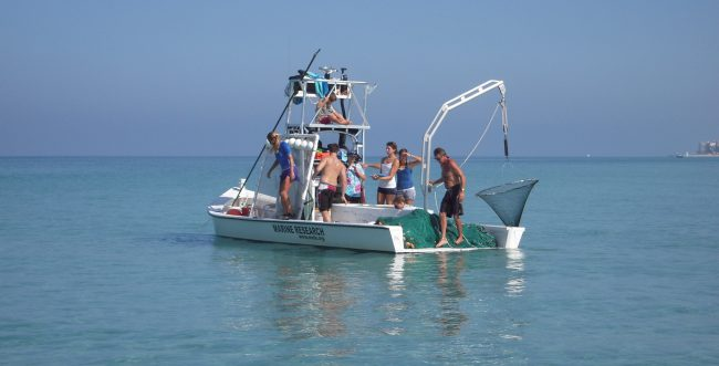 A scientific sampling vessel in tropical blue waters on a Florida expedition in collaboration with Mote Marine Laboratory